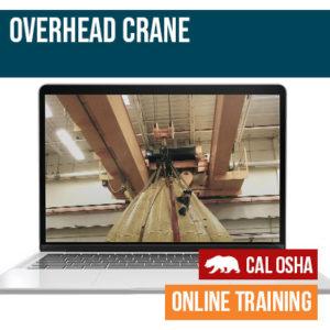Overhead Crane Online CAL Training